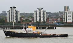 MV Holland (2) @ Gallions Reach 29-09-16 (AJBC_1) Tags: riverthames gallionsreach northwoolwich newham londonboroughofnewham eastlondon london england unitedkingdom uk ship boat vessel tug tugboat historicship nikond3200 mvholland dlrblog ajc