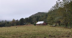 Rowlesburg, West Virginia (2 of 3) (Bob McGilvray Jr.) Tags: rowlesburg westvirginia bo baltimoreohio caboose wood wooden private farm sevenisland railroad train tracks c2141 cupola