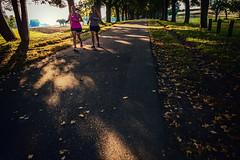 Run (Melissa Maples) Tags: ludwigsburg germany deutschland europe apple iphone iphone6 cameraphone dawn morning park monrepos sunrise autumn trees road path fitness runners running women