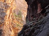 2016-09-p02-narrows-mjl-023 (Mike Legeros) Tags: ut utah zion zionnationalpark narrows river slotcanyon swiftwater wetfeet watchyourstep