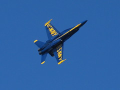 Blue Angel flyby (Pest15) Tags: blueangels fleetweeksf2016 airshow sanfrancisco landsend outdoorphotography military aircraft planes jets fa18hornet usnavy