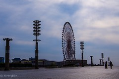 Sunday afternoon (Yorkey&Rin) Tags:  2016 autumn em5 ferriswheel japan lumixg20f17 october odaiba olympus people rin sunday ta232606 tokyo town