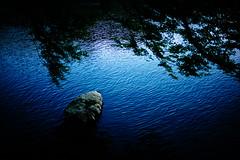 (sunnywinds*) Tags:           kyoto arashiyama autumn riverside reflect reflection momiji  leica summilux m240
