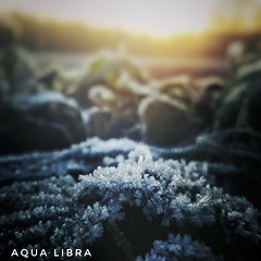 Sun is coming (Aqua Libra) Tags: ice freezing sunlight ray aqualibra nature blue yellow outside outdoor natural 500x500 square