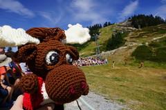 DSC00129 (The Crochet Crowd) Tags: crochetmoose amigurumi moose crochet doll alaska britishcolumbia thecrochetcrowd michaelsellick jeannesteinhilber danielzondervan crochetcruise mooseontheloose