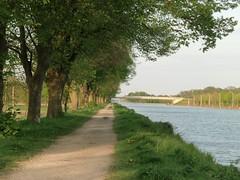 Die Bäume, der Weg und der Kanal (philosaphira) Tags: mittellandkanal deutschland germany recke nrw canal kanal weg path nordrheinwestpfahlen north rhinewestphalia