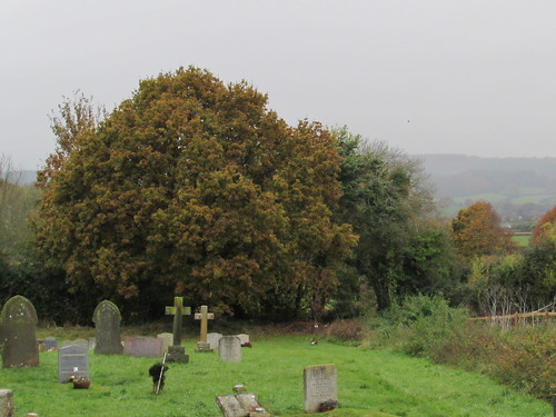 Arlingham: St Mary's Churchyard (Gloucestershire)