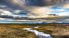 Herubrei (piparinn) Tags: sland iceland norurland herubrei fjll mountains mrudalur heidar piparinn
