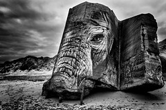 This is the story of a blockhouse. A defenseless blockhouse. (The Black Fury) Tags: graffitti art dune beach nature seascape surrealism street noir et blanc black white bw monochrome