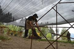 XII Encuentro de los Escultores del Valle (Colegio Valle del Aconcagua) Tags: escultores esculturas quillota valle del aconcagua