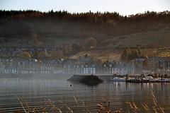 (Zak355) Tags: rothesay isleofbute bute scotland scottish winter frost portbannatyne