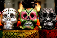 Day of the Dead 2016 23 (part 1) (Ruben Gusman Photography) Tags: thenelsonatkinsmuseumofart mariachis diadelosmuertos dayofthedeadskulls skeletons death donquioto kansascity