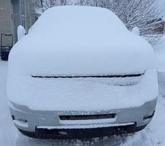 There's a Chevy Silverado 2500 under there somewhere. (Zircon_215) Tags: snow snowfall newfoundland westernnewfoundland