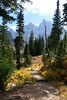 cascadecanyon9 (laelia74) Tags: wyoming grandtetons fall nature outside hiking mountains