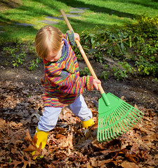 Little Man Earning His Keep (TBrianJones) Tags: fall children child boots sweaters littlepeople raking rakes rainboots laves lawncare