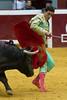 DSC_9324.jpg (josi unanue) Tags: animal blood spain bull arena bullfighter sansebastian esp toro traje asta sangre espada bullring unanue guipuzcoa matador torero tauromaquia sufrimiento cuerno ureña banderilla banderilero