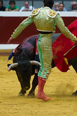 DSC_9389.jpg (josi unanue) Tags: animal blood spain bull arena bullfighter sansebastian esp toro traje asta sangre espada bullring unanue guipuzcoa matador torero tauromaquia sufrimiento cuerno ureña banderilla banderilero