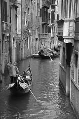 CSC_0314 (antiogar) Tags: venice venezia venedig venis