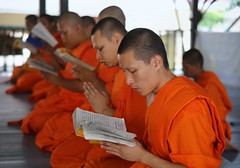 Teenagers live as a novice monk in Thailand (Bn) Tags: life old school portrait people man face thailand religious pain amazing search movement topf50 god nirvana expression bangkok buddha buddhist religion crying deep teenagers monk buddhism thoughts monks end donation spiritual population sensuality wat enlightenment 95 suffering powerful wrinkles ending siddhartha serve extremes craving teachings relinquish thailands theravada thung 50faves officiants khru