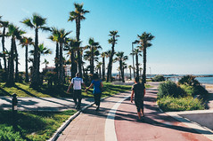 It looks like California (Nicole Favero) Tags: california camera flowers sea sky people italy rome building cute verde love beach amazing spain nikon mine place awesome violet places forever lovely palermo effect awesomeness civitavecchia nikond5000