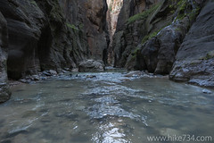"""The Narrows • <a style=""""font-size:0.8em;"""" href=""""http://www.flickr.com/photos/63501323@N07/21881331224/"""" target=""""_blank"""">View on Flickr</a>"""