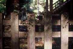 Shadow of autumn (WataruKagaya) Tags: autumn light shadow mountain film shrine olympus nagasaki om20 kompira