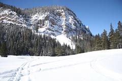 SnowMo IV 2013 010