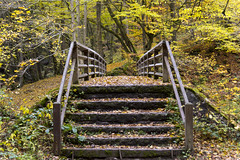 Hiking in the Eifel National park (George Pachantouris) Tags: park autumn lake west colors germany hike eifel national rhine monschau westphalia rur einruhr