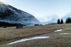 Vilsalpsee, Tannheimer Tal, Tirol-0974 (Holger Losekann) Tags: tirol tannheimertal vilsalpsee
