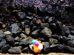 Happy new year with balloons and rocks (Albion Harrison-Naish) Tags: sydney streetphotography olympus sydneyharbour rosebay randomoddities em5 sydneystreetphotography olympusem5 lumixg20f17ii albionharrisonnaish