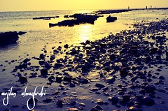 Golden Light (wejdanalmaghrabi) Tags: jeddah sea beach stones sunny sunlight بحر جدة شاطئ احجار نهار شمس مشمس morning