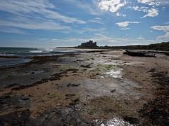 on bamburgh beach (Johnson Cameraface) Tags: 2016 september autumn olympus omde1 em1 micro43 mzuiko 1240mm f28 johnsoncameraface bamburgh beach northumberland sea seaside coast bamburghcastle rocks castle