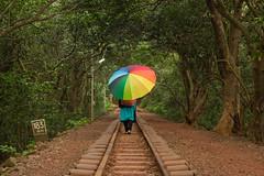 Matheran-4821 (Satish Chelluri) Tags: satishchelluri satishchelluriphotography matheran maharastra umbrella mansoon