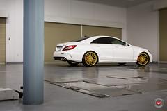 Mercedes-Benz CLS63 - Vossen Forged Precision Series VPS-305T - Mondera Japan -  Vossen Wheels 2016 - 1030 (VossenWheels) Tags: vossen vossenjapan aftermarket aftermarketforgedwheels cls cls55 cls55aftermarketforgedwheesls cls55forgedwheels cls55wheels cls550 cls63aftermarketwheels cls63forgedaftermarketwheels cls63forgedwheels cls63wheels cls64 forgedwheels mb madeinmiami mercedes mercedesclsforgedwheels mercedesclswheels mercedesbenz mondera monderajapan nagano precisionseries runaway runawayjapan runawaynagano sdobbins samdobbins tas tas2016 tokyoautosalon tokyoautosalon2016 vps304 vps305t vossencls vossencls55 vossencls63 vossenforged vossenmercedes vossenwheels