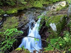 IMG_3543 Manganese Falls (jgagnon63@yahoo.com) Tags: keweenawpeninsula keweenawcounty coppercountry copperharbor upperpeninsula uppermichigan michigan autumn october waterfalls falls stream waterfall creek green canong1x michiganwaterfalls
