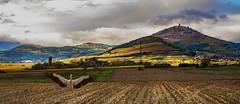 Chteau du Haut-Knigsbourg (hardy-gjK) Tags: castle chateau burg schloss berg hill montagne view herbst autumn colored color storch stork cigogne feld champ field automne