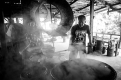 . (GiuGiu_) Tags: nikon thailand worker sugar travel coconut holiday traditional culture