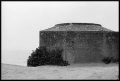 Sable et bton... (DavidB1977) Tags: argentique france nb bw film bretagne bunker wwii blockhaus nikon f4