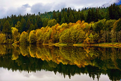 Ash Lake (Darrell Wyatt) Tags: lake reflection water washington stevenson