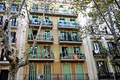 Caminando por Barcelona - Balcones (Fnikos) Tags: barcelona catalunya catalonia catalua balcony architecture city building buildingcomplex facade door window nature tree outdoor