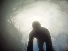 GOPR5952 (ambrogi_taubate) Tags: naturezaselvagem marinha mergulhando ubatuba sp brasil naturezamarinha fantstica apneia 10m setembro primavera 2016