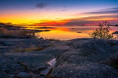 morning rising (SeALighT!) Tags: suomi finland finnland land rocks coast reed trees sunrise dawn