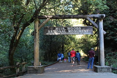 Entrance to Muir Woods (CAYphotos) Tags: muirwoods redwoods nationalpark millvalley trees