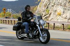 Harley-Davidson 1610164651w (gparet) Tags: bearmountain bridge road scenic overlook motorcycle motorcycles goattrail goatpath windingroad curves twisties
