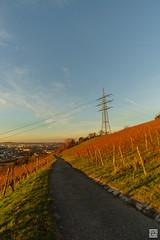DSC01362 (SVNKNR) Tags: stuttgart deutschland germany weinberg vineyard herbst autumn sonnenuntergang sunset landschaft landscape stdtisch urban sony sonyalpha alpha6000 a6000