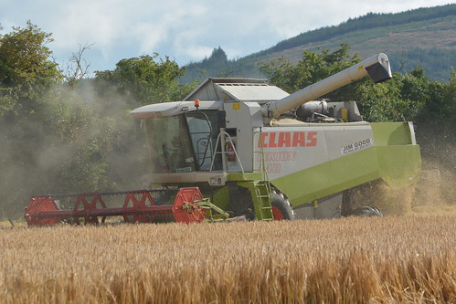 Claas Lexion 440 Combine Harvester Cutting Winter Barley