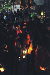 La-magia-del-bosco-di-notte-2016-44