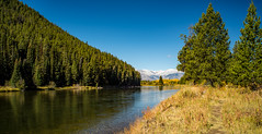 Grand Teton National Park (nebulous 1) Tags: grandtetonnationalpark grandtetonnp gtnp wyoming snakeriver river mountains landscape nature water trees grass nikon nebulous1 glene
