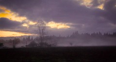 Fog at Dusk (robinlamb1) Tags: landscape outdoor scenic fog clouds darkclouds house barn nightfall dusk sundown langley