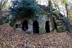 DSC_7689 (Paul Topley) Tags: cave hermitage fisheye